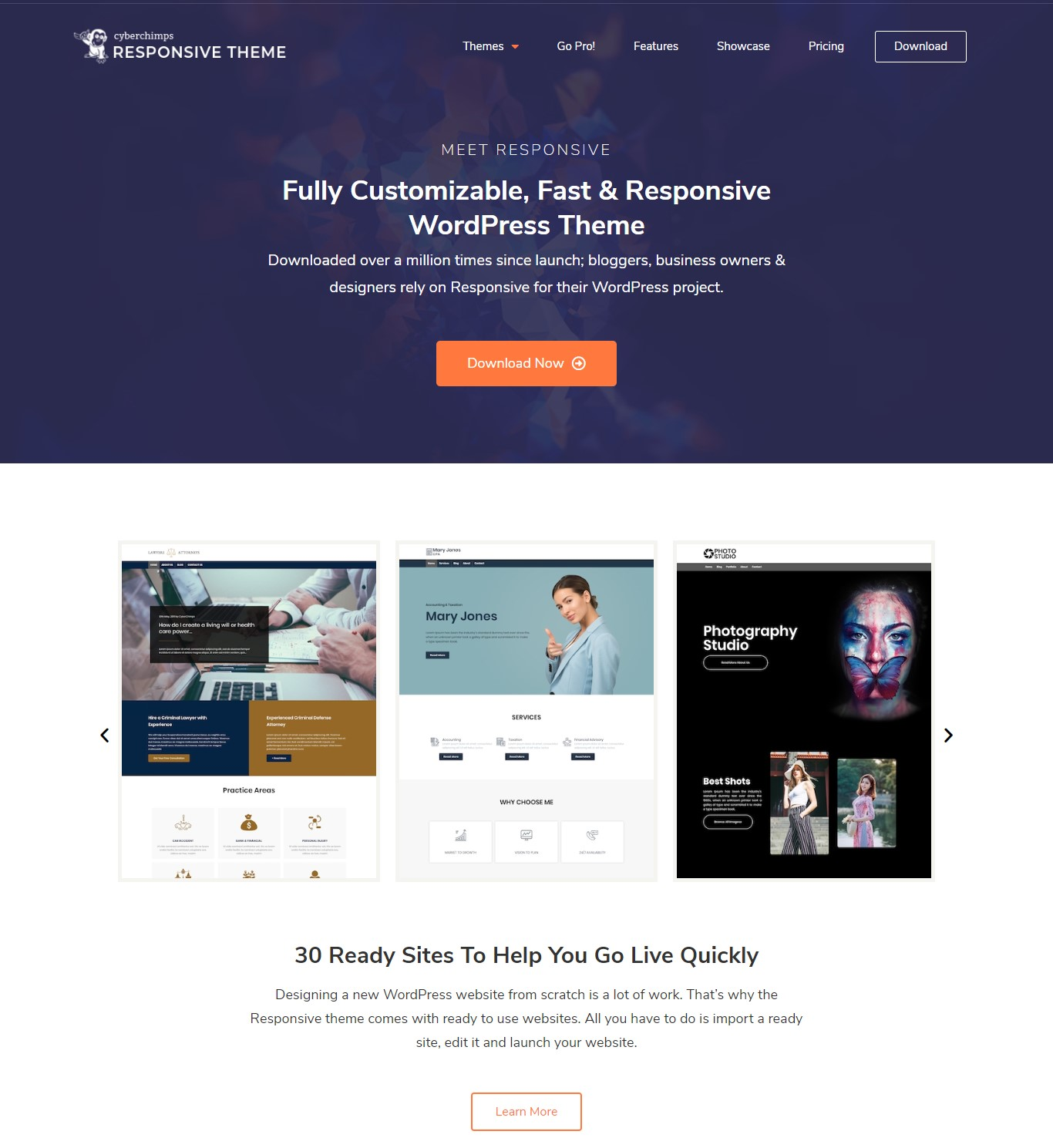 Cyberchimps Responsive theme